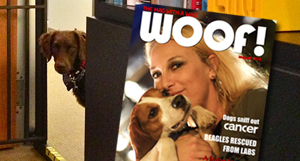 R+M Featured in Woof! Magazine